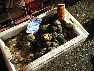 Loxechinus albus - Chilean sea urchins for sale in Feria fluvial, Valdivia. Three sea urchins are sold for 1000 Chilean Pesos.