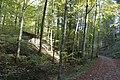 Eschenberg - panoramio (37).jpg
