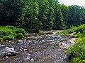 Esopus Creek above Shandaken, NY.jpg