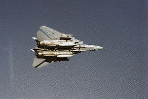 F-14A VF-24 Sparrows and Sidewinders 2.JPEG
