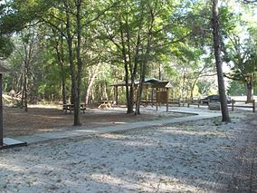 FL Dunns Creek SP04.jpg