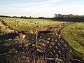 Farmland near Silverburn - geograph.org.uk - 331715.jpg