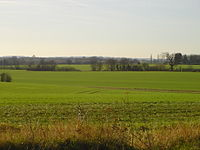 Farmland south of Lawshall Hall