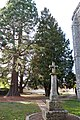 Faverolles séquoia crucifix Eure-et-Loir France.jpg