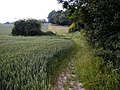 Field Boundary, Trottiscliffe - geograph.org.uk - 482337.jpg