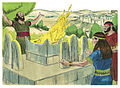 First Book of Kings Chapter 14-4 (Bible Illustrations by Sweet Media).jpg