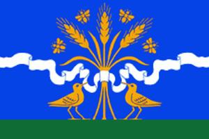 Kirsanovsky District - Image: Flag of Kirsanovsky rayon (Tambov oblast)