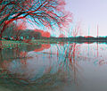 Flickr - jimf0390 - JimF 03-21-10-0045a tree ^ reflection make C.jpg