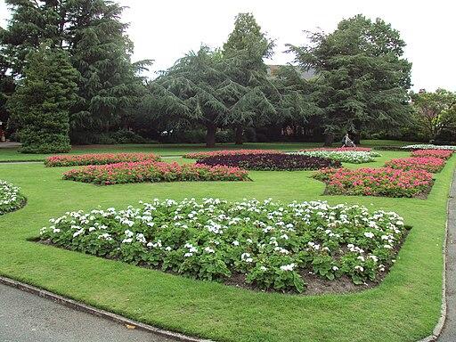 Flowerbeds, Grosvenor Park, Chester - DSC08003