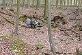 Flytip in Black Wood - geograph.org.uk - 1772429.jpg
