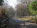 Fontridge Lane - geograph.org.uk - 1113787.jpg