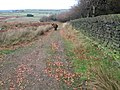 Footpath at Oldfield Hill near Meltham - geograph.org.uk - 1562845.jpg