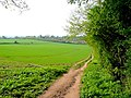 Footpath to town - geograph.org.uk - 1268572.jpg
