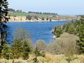 Forest and water - April 2015 - panoramio.jpg