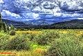 Frisco-landscape.jpg - panoramio.jpg