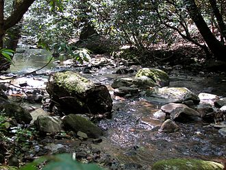 Dicks Creek (Chestatee River) - Frogtown Creek, a tributary to the Chestatee River in Lumpkin County, Georgia