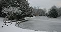 Frozen boating lake (5277315449).jpg