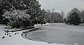 Frozen boating lake (5277315449).jpg