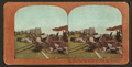 Ft. Mason refugee campers and their belongings saved from the flames of burning San Francisco, from Robert N. Dennis collection of stereoscopic views 2.png