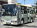 Fujikyu Shonan Bus in front of Yamakita Station.jpg