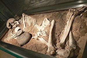 Rössen culture - Grave