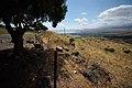 Galilee - Israël (4674711689).jpg