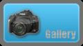 Gallery Albertus.png