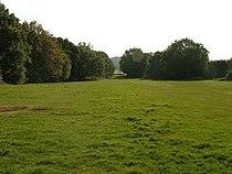 Galleywood Common.jpg