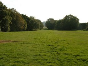 Galleywood Common.jpg
