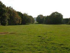 Galleywood - Galleywood Common