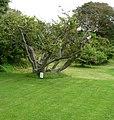 Garden of the Alfriston Clergy House - panoramio.jpg