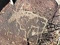 Gemsbok engraving, Wildebeest Kuil, Kimberley, South Africa.JPG