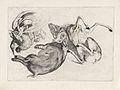 Geschoten wild- een dood wild zwijn, hert, reiger en ander wild.jpeg