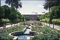 Ghavam garden shiraz.jpg