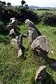 Giant's Grave - geograph.org.uk - 25462.jpg