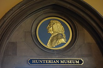 Hunterian Museum and Art Gallery - Hunterian Museum.
