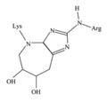 Glucosepane1.png