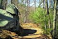 Goat-hill-trail.jpg
