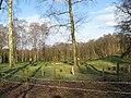Golfers golfing beside Petty Pool Woods - geograph.org.uk - 1773887.jpg