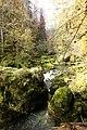 Gorges de l'Orbe - img 45847.jpg