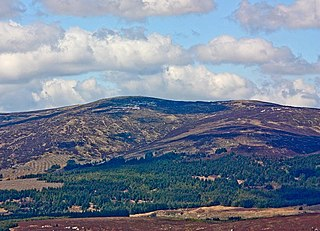 Carrigvore Mountain in Wicklow, Ireland