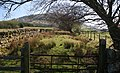 Great Mell Fell - geograph.org.uk - 1258740.jpg