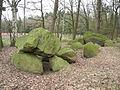 Großsteingrab Rickelmann I.JPG