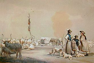 Gulyás (herdsman) - Gulyás by Sterio Károly (1821–1862)