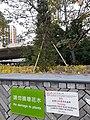HK 荃灣 Tsuen Wan 西樓角路 Sai Lau Kok Road 公園 Garden January 2021 SS2 01.jpg
