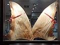 HK MK 旺角 Mongkok 彌敦道 601 Nathan Road 創興廣場 Chong Hing Square 魚翅大排檔 Shark's Fin Restaurant lunch food November 2020 SS2 04.jpg