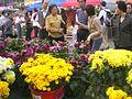 HK Sham Shui Po Fa Hui Park Flower Fair Negotiation.JPG