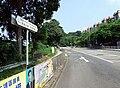 HK TaiPoRoad YuenChauTsaiSection.JPG