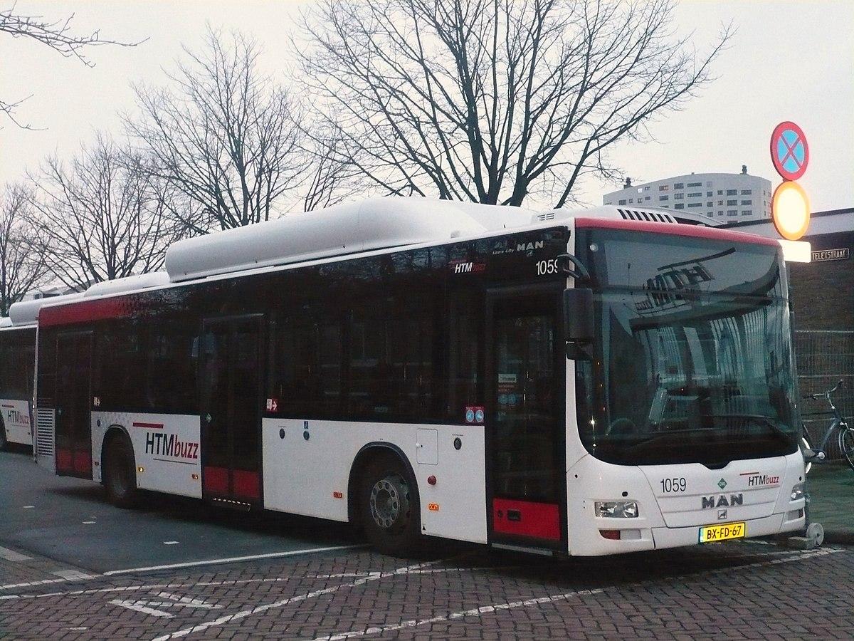 Haagse Bus Wikipedia