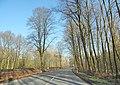 Hamm, Germany - panoramio (5219).jpg